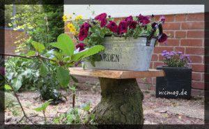 pikfeines Blumen- und Getränke-Ablage