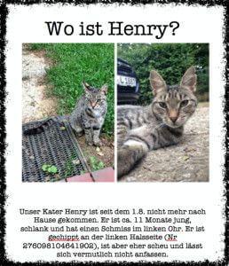 Suchmeldung für Sir Henry