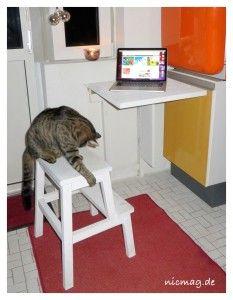 Arbeitsplatz mit Katze